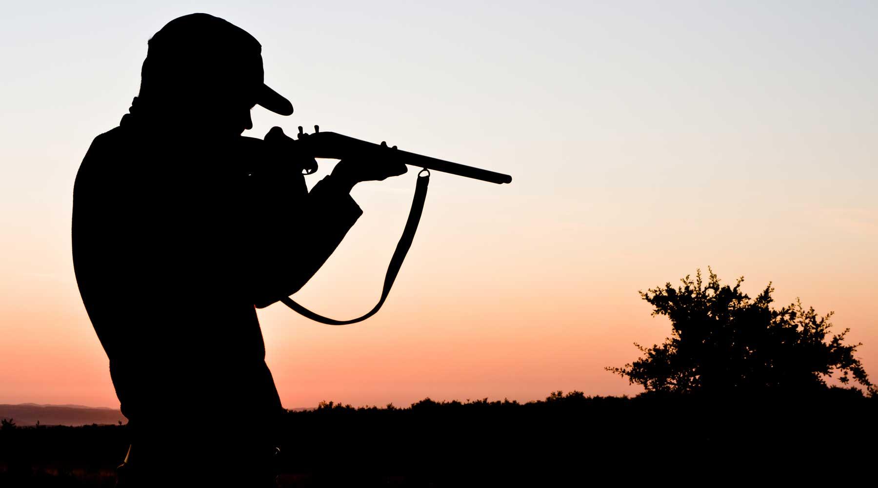 Ultimate Hunting Safaris